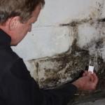 indoor-mold-test