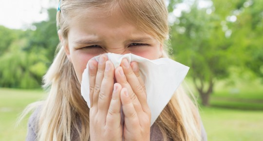 Seasonal Allergies or Mold Problem?